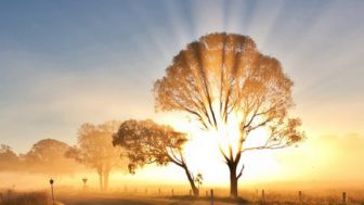 BÜYÜK İMAM İMÂM-I ÂZAM EBÛ HANÎFE -RAHMETULLÂHİ ALEYH-