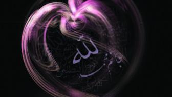 Yeniden Dirilişin Öncüleri; Gönül Sultanları