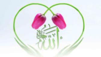 Kalp, Zikrullah İle Hayat Bulur